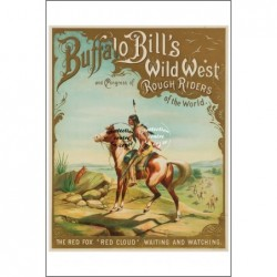 CINEMA:BUFFALO BILL'S WILD...